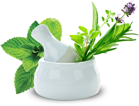 V.L pharma Ayurvedic Treatment